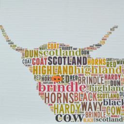 HIGHLAND COW (head)  order code 335