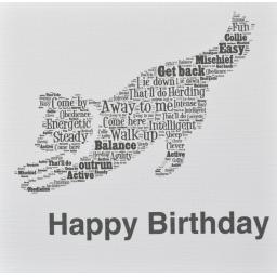 COLLIE DOG - HAPPY BIRTHDAY  - order code 214