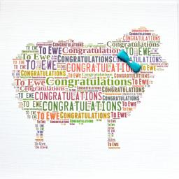 CONGRATULATIONS TO EWE WITH BOW  (order code 369)