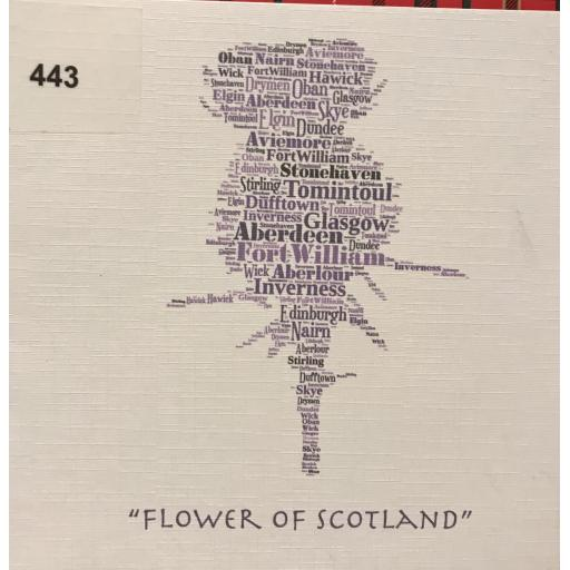 Flower of Scotland Thistle  (order code 443)