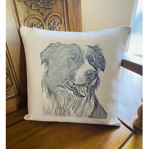 Collie dog cushion